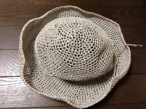 リーフィーの麦わら帽子(改訂版)2